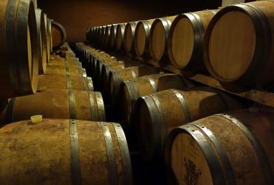 Gattinara, terra di straordinari vini.